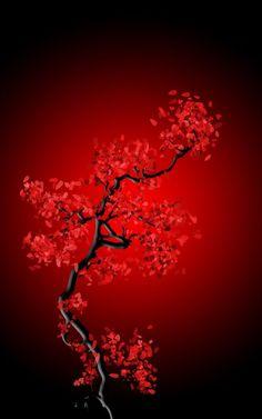 Preto,Branco & Red : Foto
