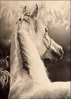 » Connection  2008.  Original pencil drawing   30x24 cm  Series The Magical World of Horses      Wonderful World  2008. Original p...