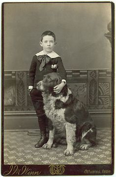 Victorian Boy and His Dog Stunning Amazing Photo Must See Cabinet Card | eBay