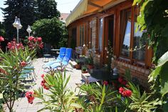 Rózsa apartman, terasz. Badacsony - Lake Balaton - Hungary Bacchus, Hungary, Patio, Outdoor Decor, Plants, Travel, Home Decor, Viajes, Decoration Home