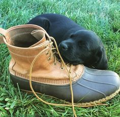 Happy September! Wake me up when it's the long weekend. (Photo via Instagram: guacamoler_) L.L.Bean Bean Boots