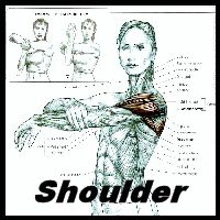 Start this Shoulder stretching exercise by standing erect, head level, and one arm horizontal. With your other hand grasp the elbow of the horizontal arm