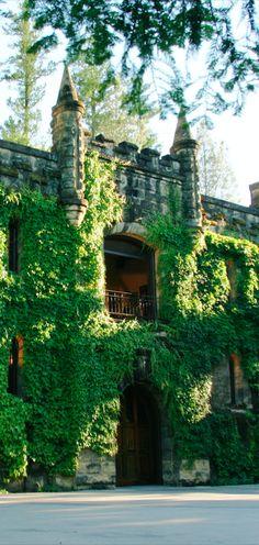 ღღ Chateau Montelena Winery in Calistoga, California • photo: Chateau Montelena Winery Gotta go there!