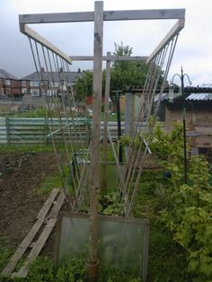 http://chat.allotment-garden.org/index.php?topic=105059.0