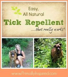 Easy Natural Tick Repellent that really works! For dogs and people.
