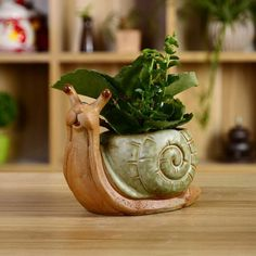 Small hand-made clay pots, planters for garden, succulent, cactus - Snail Succulent Pots, Planting Succulents, Potted Plants, Flower Planters, Flower Pots, Planter Pots, Beginner Pottery, Coil Pots, Pottery Animals