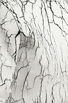 Artifact Skin Co.| Inspiration artifactskinco.com