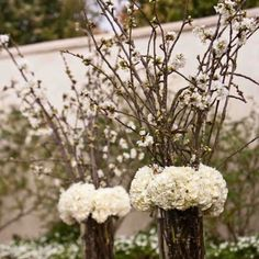 Willow & Hydrangea Arrangements..