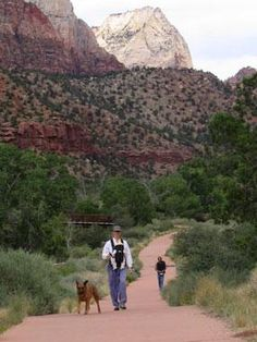 Dog friendly hikes in Utah from bringfido.com