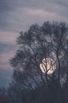 Moon gorgeous view!
