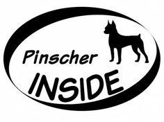 Hund Inside Auto AufkleberInside Aufkleber: Pinscher