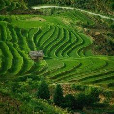 25 best gambar pemandangan alam images beautiful places rh pinterest com