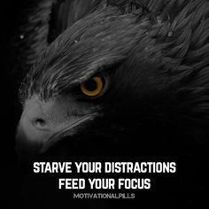 quote. motivational. inspirational. eagle. animals. Sad Love Quotes, Badass Quotes, Me Quotes, Qoutes, Inspirational Quotes About Success, Success Quotes, Positive Quotes, Motivational Leadership, Work Motivation