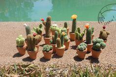 cactus amigurumi . tejido a crochet