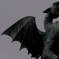 Imagem de dragon, aesthetic, and gray
