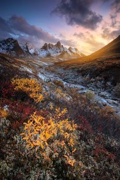wowtastic-nature: Tombstone River on by Pete Wongkongkathep, Los Angeles, USA☀ NIKON Alaska, Landscape Photography, Nature Photography, Beautiful Places, Beautiful Pictures, Beautiful Scenery, Simply Beautiful, Yukon Territory, Destinations