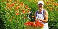 Lanaudière Southern Prep, Prepping, Activities, Place, Centre, Palette, Boutique, Gardens, Edible Flowers