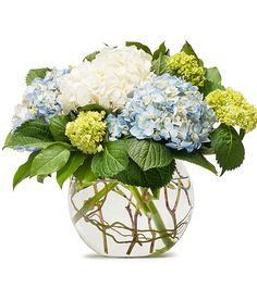Beautiful Cream, Blue and Green Hydrangea are arranged in a bubble bowl, creating this truly delightful look.