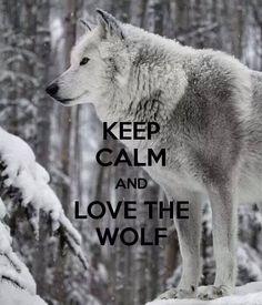 """KEEP CALM AND LOVE THE WOLF"".   ~ Terri"