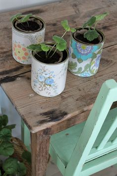 vintage wallpaper covered tin can planters
