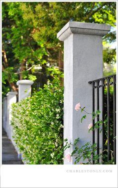 Spring in #Charleston, S.C. #Charlestonly