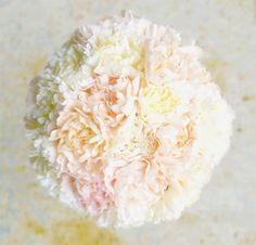 carnations can be cool! - peach and ivory carnation bouquet