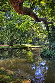 River Cherwell, Christ Church Meadow, Oxford by sdhaddow, via Flickr