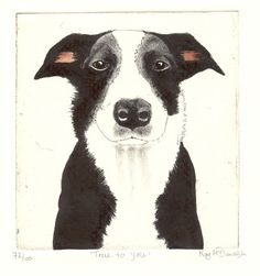 Original Dog Etching 'True To You' by Kay McDonagh on ARTwanted