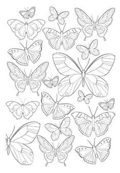 garden drawing Jardim Encantado - Antistress Coloring Book n .-- Enchanted Garden Antistress Coloring Book n color Colouring Pages, Adult Coloring Pages, Coloring Books, Butterfly Mandala, Butterfly Drawing, Drawings Of Butterflies, Butterfly Quilt, Butterfly Mobile, Butterfly Painting