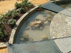 Construcción de estanques - Jardines Posibles. Jardinería y Paisajismo. …