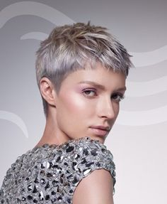 A short grey straight coloured silver hairstyle by Wella