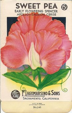 Sweet Magnolias Farm: FREE PRINTABLES ~ Antique Sweet Pea Seed Packet ~ Back side also available on blog along with 2 other seed packets