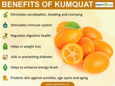 Some of the most important health benefits of kumquats include their ability to improve the immune system, regulate your digestive system, reduce your chances of developing diabetes, lower your cholesterol levels, boost the health of your skin, teeth, eyes, and hair, strengthen your bones, and improve nerve health. Kumquats may have a strange name, but they don't have that strange of an appearance. In fact, these small citrus fruits resemble oranges to a certain degree, both inside and ou...