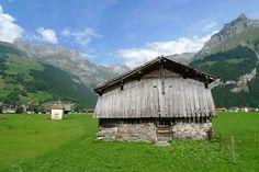Cow pasture, Engelberg