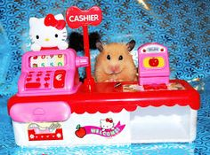 The Ark In Space: Unexpectedly Funny Things to do with Hamsters When You're Bored