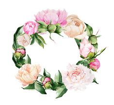Find images and videos about text, design and free on We Heart It - the app to get lost in what you love. Wreath Watercolor, Watercolor Drawing, Watercolor Flowers, Watercolor Paintings, Botanical Art, Botanical Illustration, Flower Frame, Flower Art, Frame Rosa