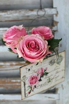 New vintage pictures of flowers shabby chic ana rosa ideas Rose Cottage, Shabby Chic Cottage, Shabby Chic Decor, Love Rose, Pretty Flowers, Pink Flowers, Paper Flowers, Romantic Roses, Beautiful Roses