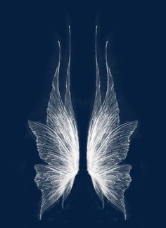wing, Fantasy Wings, Angel Wings PNG Image and Clipart Fairy Wing Tattoos, Fairy Wings Drawing, Tatoo Flowers, Ange Demon, Faeries, Art Inspo, Art Reference, Fantasy Art, Art Drawings