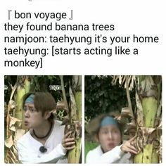 my internal monologue is this entire 5 minutes (monkey tae and green bananas)