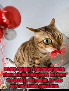 Blog of Author Michelle McLean: Friday Funnies - Birthday Time!