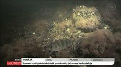 Suomen merenpohjat on saatu kartoitettua 12 vuotta kestäneen suururakan jälkeen. Itämeren pinnan alta löytyi kuolleen merenpohjan lisäksi monimuotoisia eliöyhteisöjä, jotka ovat parhaimmillaan lähes yhtä värikkäitä kuin trooppisten alueiden meriluonto. Painting, Painting Art, Paintings, Painted Canvas, Drawings