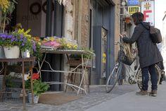 Ferrara (Italy)#StoreExterior