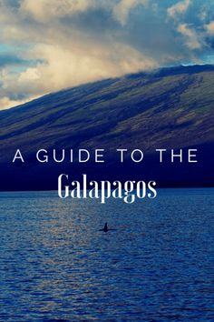 Guide to the Galapagos
