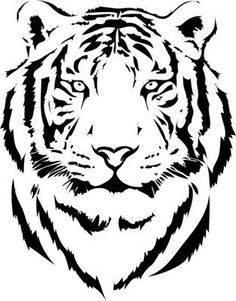 Tiger Clipart and Stock Illustrations. Tiger vector EPS illustrations and drawings available to search from thousands of royalty free clip art graphic designers. Tiger Drawing, Tiger Art, Tiger Head, Tiger Outline, Tiger Stencil, Stencil Art, Animal Stencil, Animal Paintings, Animal Drawings