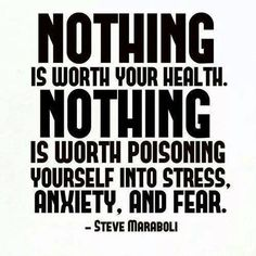 Nothing is worth your health. Nothing is worth poisoning yourself into stress, anxiety, and fear. ~Steve Maraboli