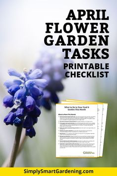 Learn what you need to do in your  spring garden. What you do now will set your flower garden up for success later on this summer. You'll get lots of ideas and tips from this list of must-do gardening tasks. Click now to download my printable flower garden checklist for April!  #simplysmartgardening #flowergarden #flowergardentips #springgarden