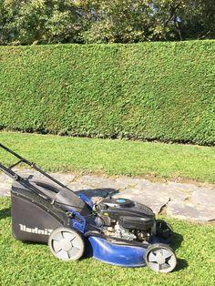 Rasenmähen macht Spass! #gartenblog #rasenmäher #garten Lawn Mower, Outdoor Power Equipment, Lawn Edger