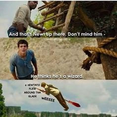 This has got to be the best maze runner meme ever