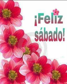 98 Ideas De Feliz Sabado Feliz Sábado Saludos De Buenos Dias Feliz