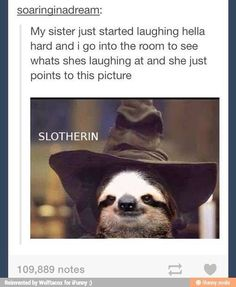 The 25 Greatest Sloths The Internet Has Ever Seen
